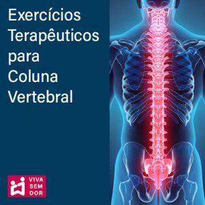 Exercícios terapêuticos para Coluna Vertebral